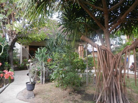 Black Sand Homestay: Nice gardens