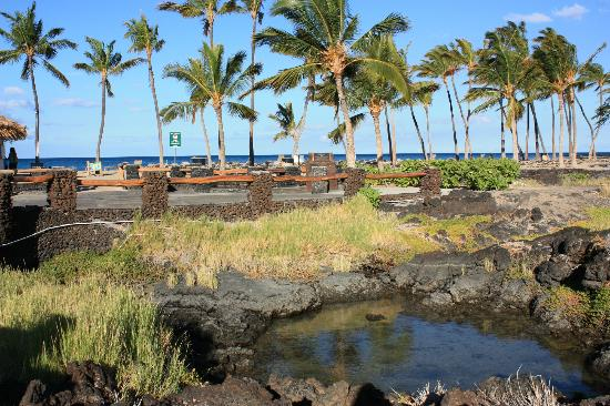 Waikoloa Beach Marriott Resort & Spa: a bay fish pond
