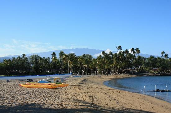 威可洛亞海灘萬豪水療度假村照片