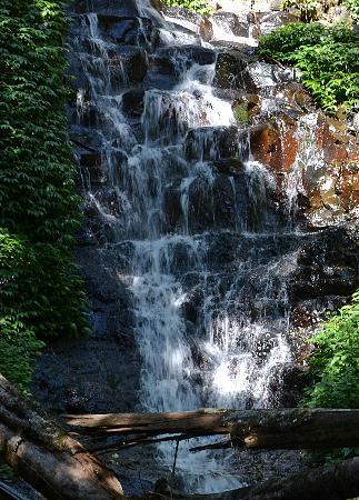 Wongari Eco Retreat: Waterfall on property