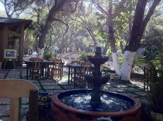 Casa Encinares Bed and Breakfast: Desayuno en el jardín