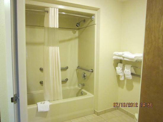 Baymont Inn & Suites Asheville/biltmore: Bathroom