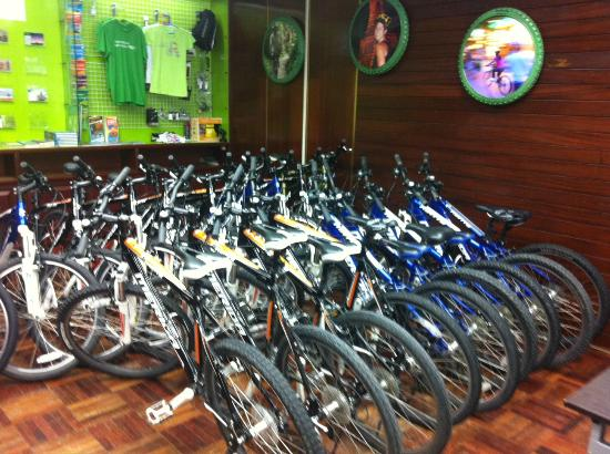 Tur Harian - Grasshopper Adventures: Bikes at their office
