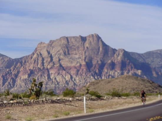 Scoot City Tours: red rock canyon