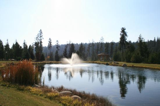 Bear Creek Lodge: Relaxing pond