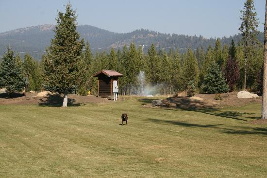 Bear Creek Lodge: Room to roam