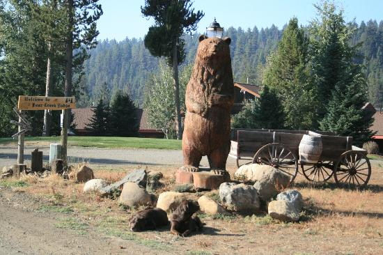 Bear Creek Lodge: Welcoming Bear