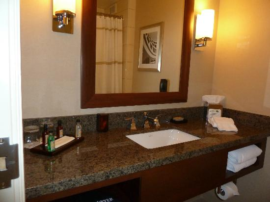 Rochester Airport Marriott: Bathroom