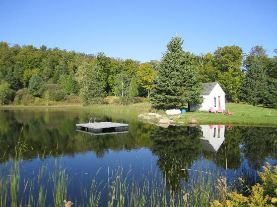 Cliff Haven Farm B&B: The swimming and fishing pond - so clear!