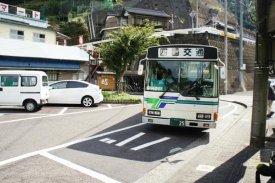 Iya Kazura Bridge: 大歩危駅からかずら橋へはバスで約20分