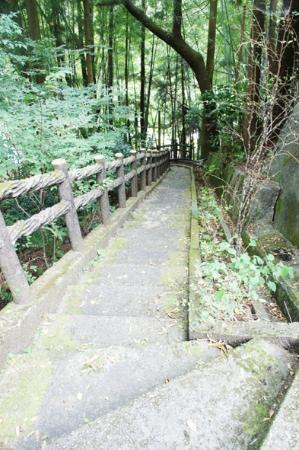 Iya Kazura Bridge: かずら橋へと続く階段