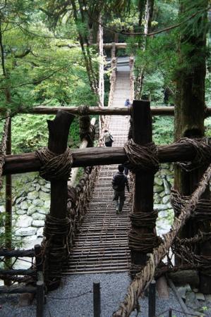 Iya Kazura Bridge: チケット売り場へ降りる階段から撮影