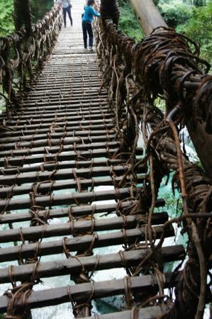 Iya Kazura Bridge 사진