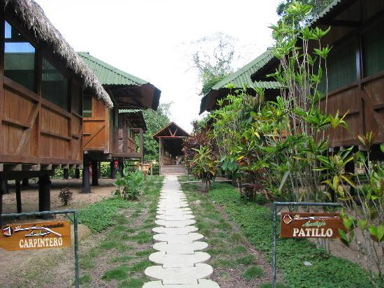 Ecoamazonia Lodge: More lodges