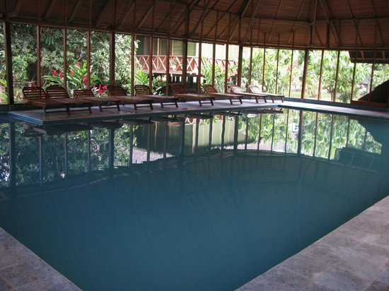 Tambopata National Reserve, Peru: Pool