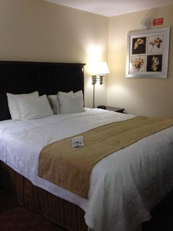 BEST WESTERN Bar Harbour Inn: pretty bedroom ~ Room 130