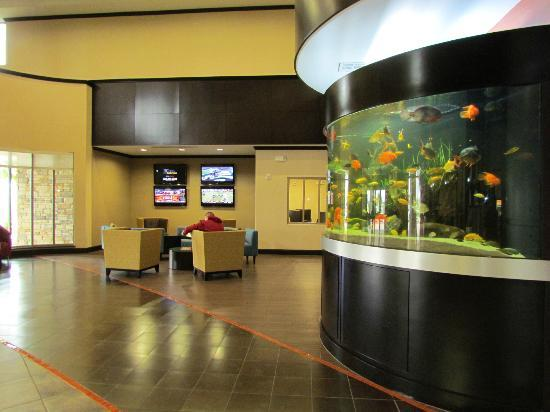 SpringHill Suites by Marriott Waco Woodway: Lobby of Hotel