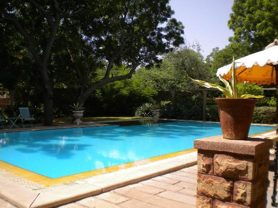 Devi Bhawan: swimming pool
