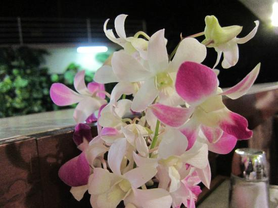 Tante's: D Fresh Dendrobiums on the table