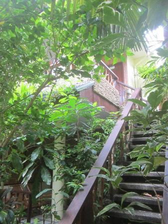Blue Mango Inn: Garden room