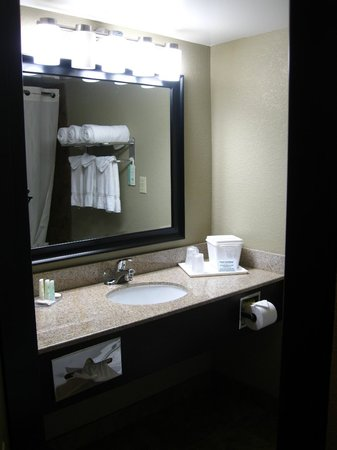 Comfort Inn & Suites Smyrna: Bathroom