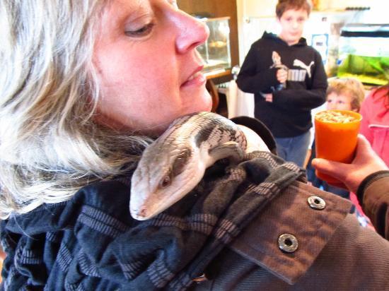 Pouakai Zoo: A hands-on zoo