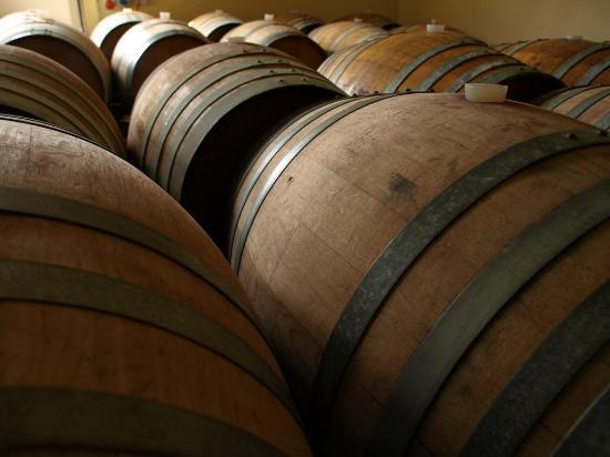 Agriturismo Tiberio: Cantina