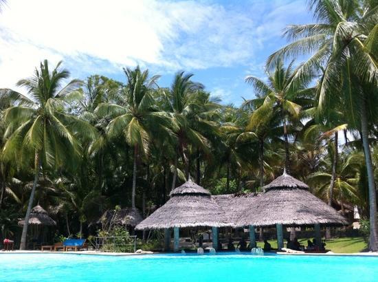 Coco Grove Beach Resort : poolside