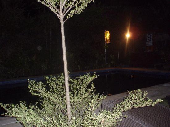 尼瑪經濟客棧照片
