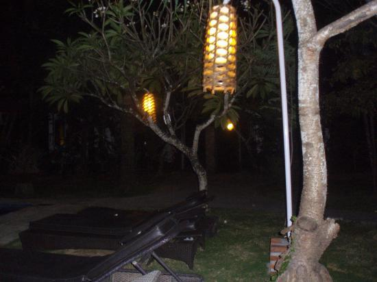 Nyima Budget Inn: giardino 