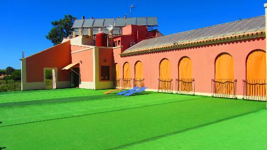 Hotel Pinomar: Terraza