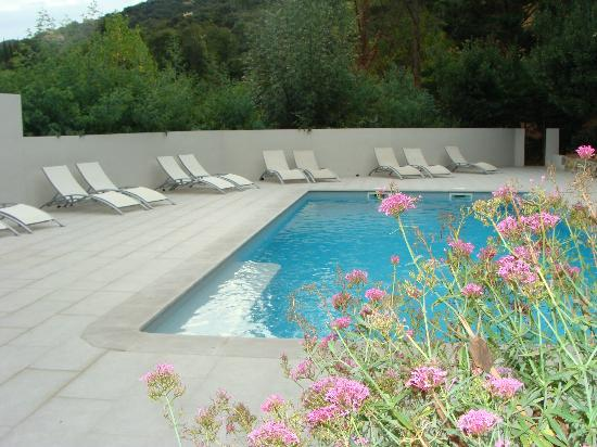 Le Relais Des Chartreuses: Beautiful pool - just too cool to use