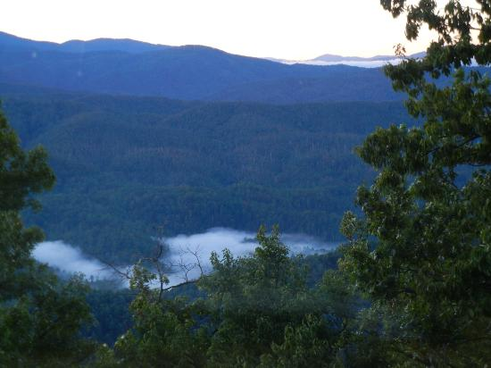 Chilhowee Mountain Retreat: Morning view as we lay in bed enjoying our coffee!
