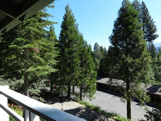 Narrow Gauge Inn: View