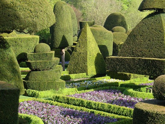 Levens Hall : The topiary garden