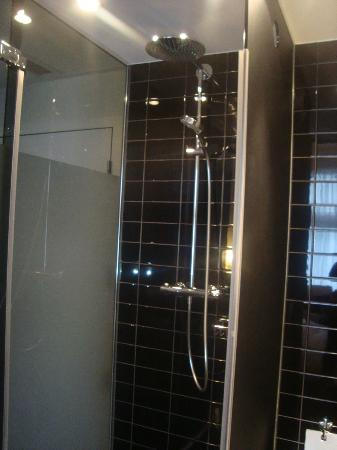 Park Hotel Amsterdam: Shower