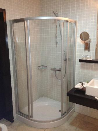 Ansen Suites: Clean basic bathrooms !!