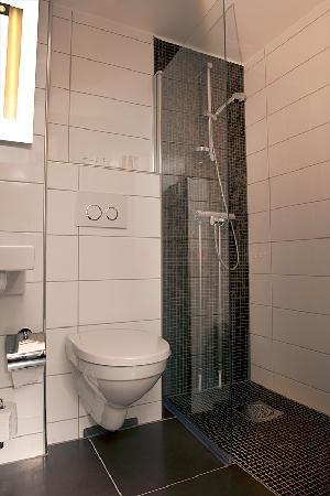 First Hotel Victoria: Standard bath room