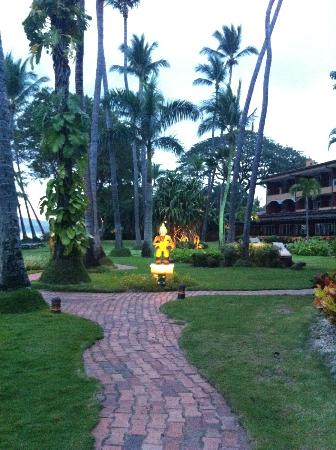 Hotel Tamarindo Diria: Part of the grassy grounds