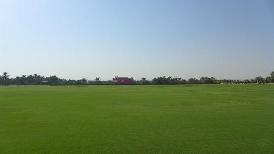 Desert Palm Dubai: Polo Field
