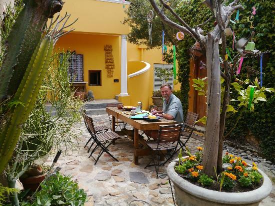 Little Lemon Tree: View into the garden