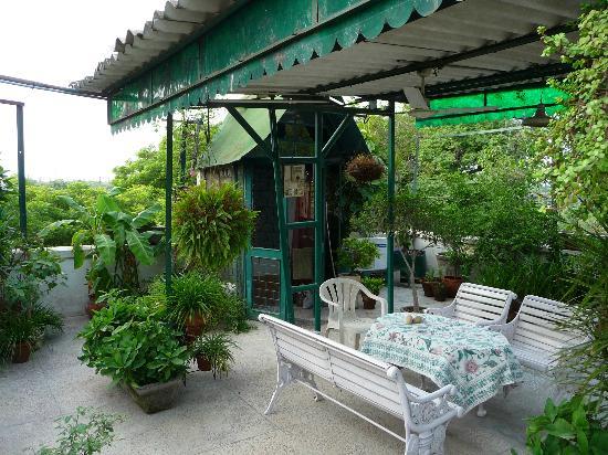 Nina Kochhar Bed & Breakfast: Rooftop