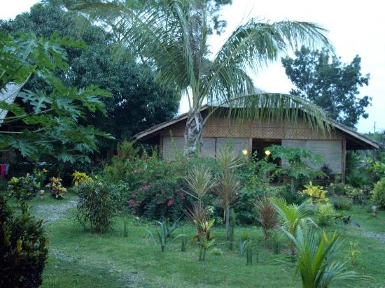 Reggae Guesthouse: Garden and Reception Center