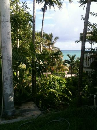 Orange Hill Beach Inn: View from outdoor swing.