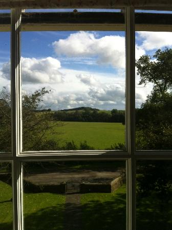 Newton Grange : View from window