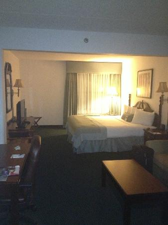 Wingate by Wyndham Atlanta/Duluth: Very nice King Size Room