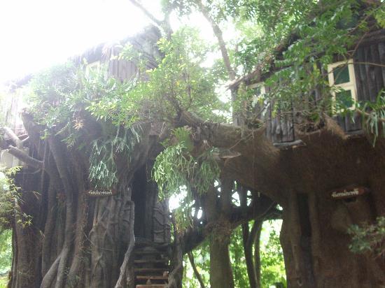 Kor Sor Resort & Spa: treehouse rooms