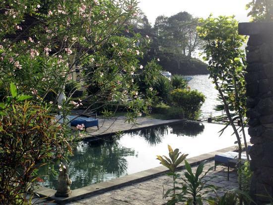 Kasawari Lembeh Resort: Pool