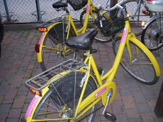 Locanda Del Re Sole: biciclette...