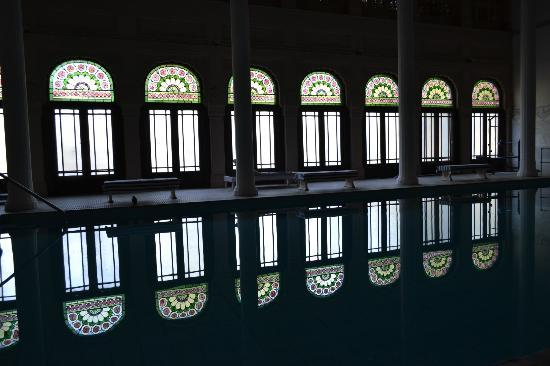 Lalgarh Palace and Museum: plunge bath/ indoor pool